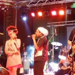 sunshine reggae - artists